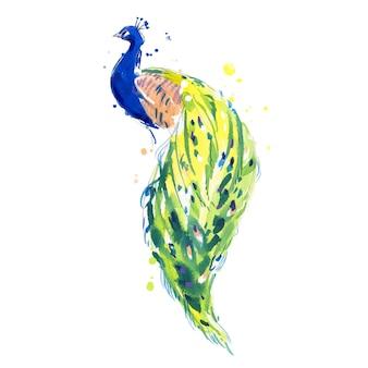 Uccello del pavone che si siede indietro vista illustrazione dell'acquerello dipinta a mano