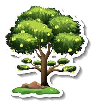 Adesivo albero di pere su sfondo bianco