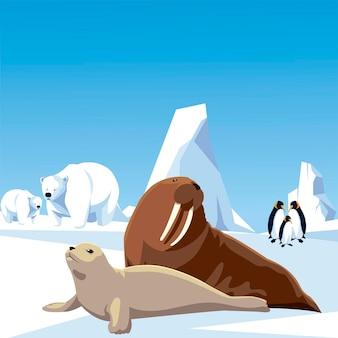 Illustrazione di paesaggio di pinguini orsi polari tricheco e foca animali polo nord e iceberg