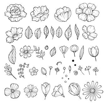 Set di icone di elementi di fiori di peonia. insieme disegnato a mano