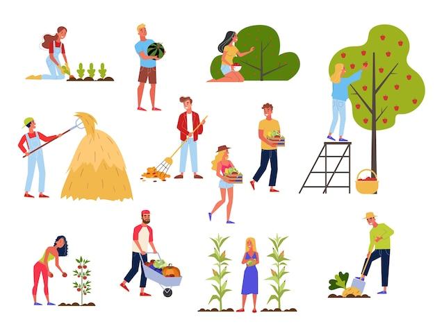 Persone sul set di fattoria. raccolta di verdure, alimenti biologici naturali