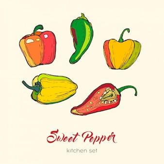 Set di pepe isolato. peperoncino rosso del peperoncino rosso piccante del peperoncino rosso della paprica dell'illustrazione disegnata a mano