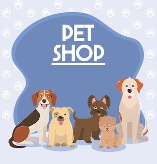 Negozio di animali, poster domestici di animali diversi cani