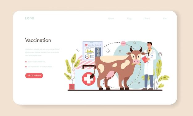 Banner web veterinario per animali domestici o pagina di destinazione. medico veterinario che controlla e cura l'animale. idea di cura degli animali domestici. cure mediche e vaccinazioni animali. illustrazione piatta vettoriale