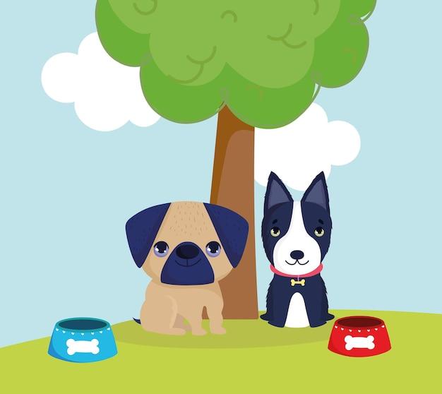 Animali domestici cane con cibo
