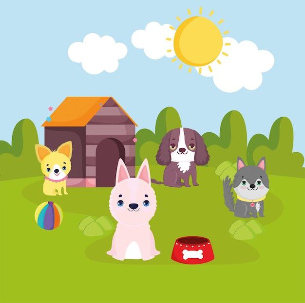 Cani da compagnia con giocattoli