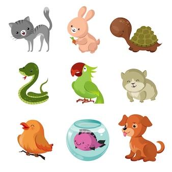 Animali domestici animali domestici icone piane di vettore