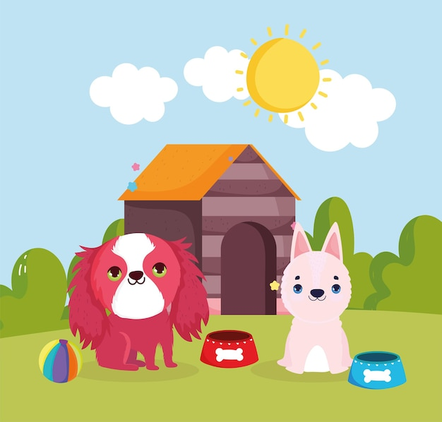 Cibo e casa per animali domestici