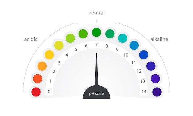 Ph scala indicatore vettoriale diagramma grafico misura alcalina acida isolata su sfondo bianco