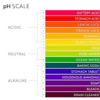 Grafico della scala del valore del ph. infografica sull'equilibrio acido-base. poster di istruzione