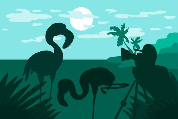 Il fotografo fotografa il fenicottero in natura. illustrazione con cacciatore di foto e video in piedi con fotocamera e due fenicotteri sul paesaggio tropicale con isola di palme. vettore