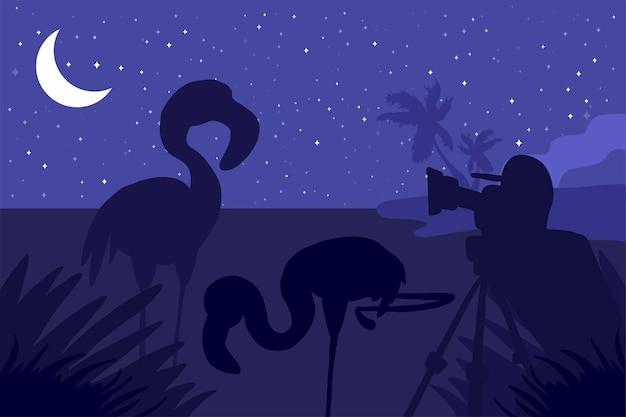 Il fotografo fotografa i tropici in natura di notte sotto la luna. paesaggio tropicale. scena oscura. vettore