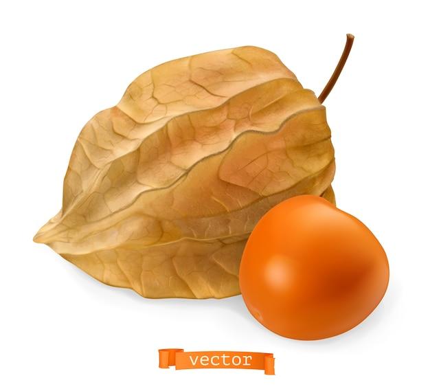 Frutta physalis con illustrazione di buccia