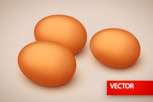 Foto di pochi uovo