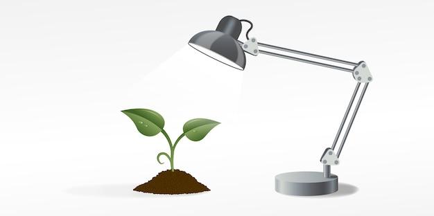 Immagine della lampada da tavolo che illumina il germoglio verde