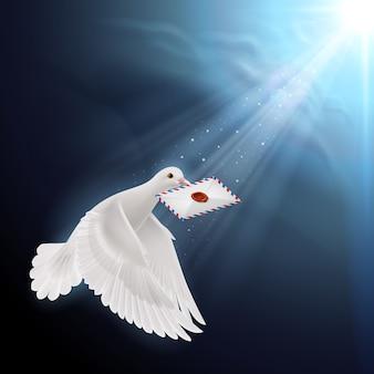 Piccione che vola con la lettera nel becco alla luce del sole