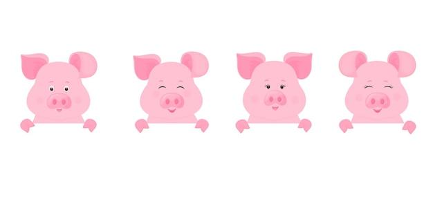 I maiali tengono un cartello bianco, un banner pulito. porcellino carino.
