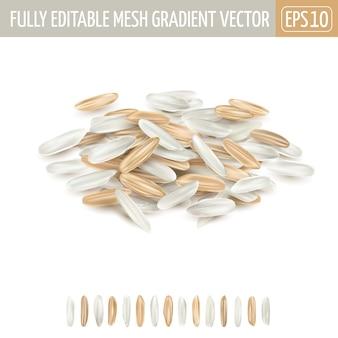 Pila di riso misto bianco e marrone a grani lunghi su uno sfondo bianco.