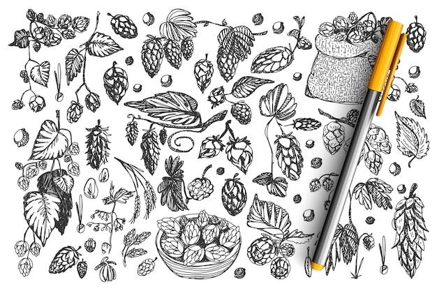Insieme di doodle di pigne.