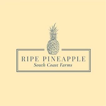 Modello di logo astratto di ananas. schizzo di sillhouette di frutta disegnato a mano con elegante cornice e tipografia retrò.