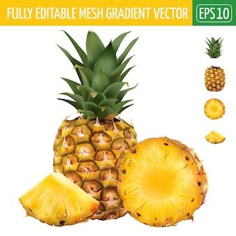 Illustrazione di ananas su bianco