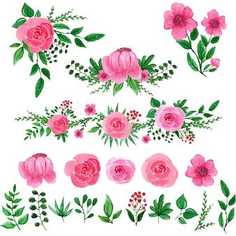 Illustrazione dell'acquerello degli elementi del fiore rosa