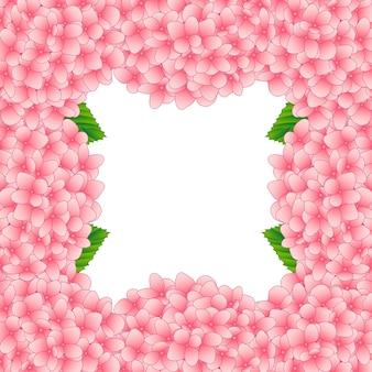 Confine di fiori di ortensia rosa