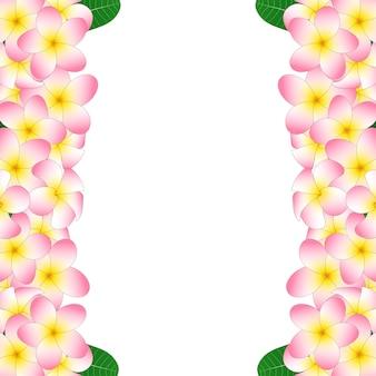 Confine di plumeria rosa Vettore Premium