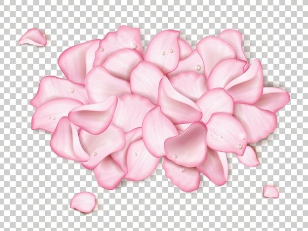 Petali di rosa rosa con goccia d'acqua glitterata