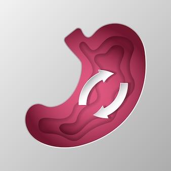 Sagoma rosa dello stomaco scolpita su carta.