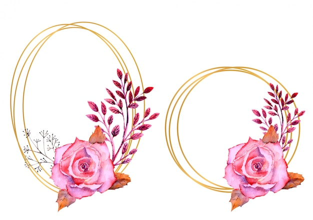 Rose rosa dell'acquerello in una cornice rotonda ed ovale isolata