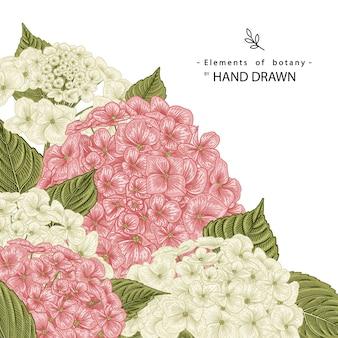 Disegni di fiori di ortensie rosa e bianchi.