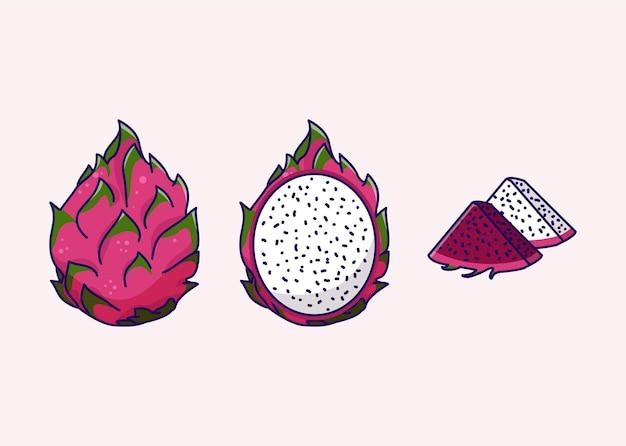 Pitaya o illustrazione di frutta del drago
