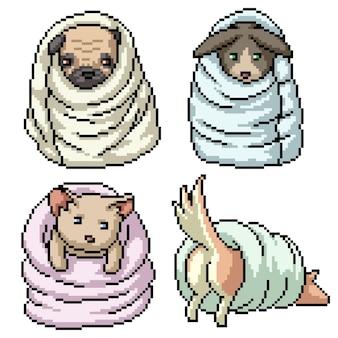 Pixel art di animali da compagnia che giocano coperta