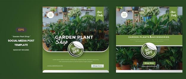 Modelli di post sui social media del negozio di piante