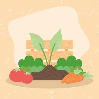 Cestino per piante e legno