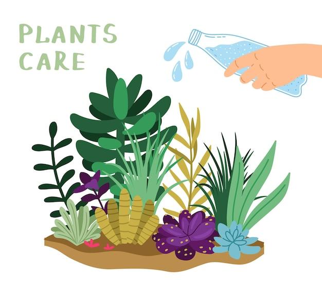 Cura delle piante. giardino domestico, innaffiare i fiori. bottiglia da tenere in mano, spruzzi di liquido e illustrazione vettoriale di verdure