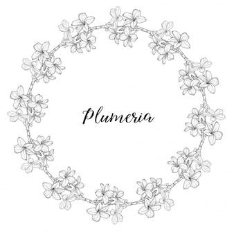 Plumeria. collane di fiori tropicali hawaii, bali, indonesia, sri lanka. illustrazione