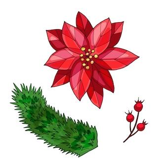 Poinsettia, ramo di bacche e ramo di abete rosso. illustrazione disegnata a mano. isolato