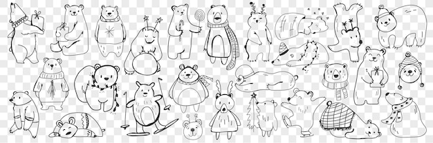 Insieme di doodle di orso polare e orsacchiotto. collezione di orsi divertenti disegnati a mano in sciarpe e accessori fare sport, dormire, godersi la vita isolata.