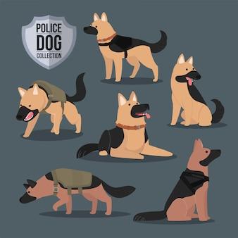 Cane poliziotto pastore tedesco collezione molte pose