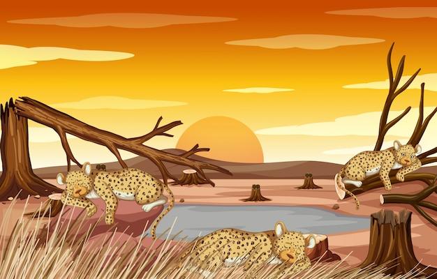Scena di controllo dell'inquinamento con tigri e siccità