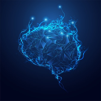 Cervello poligonale