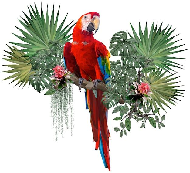 Poligonale illustrano il disegno dell'uccello dell'ara scarlatta con piante della foresta amazzonica