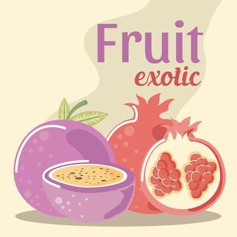 Illustrazione esotica della frutta fresca del frutto della passione e del melograno