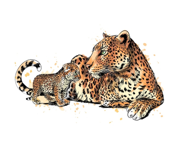 Ritratto di un leopardo da una spruzzata di acquerello, schizzo disegnato a mano. illustrazione di vernici