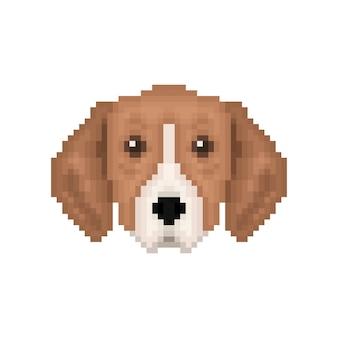 Ritratto di cucciolo grande segugio tricolore anglofrancese