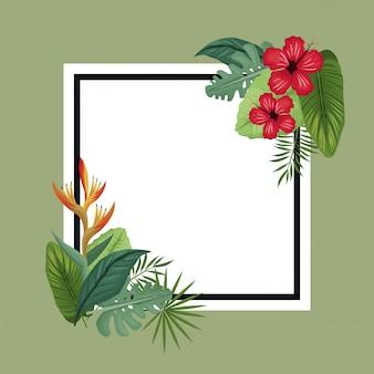 Palma di foglie tropicali di poster ibisco e uccello del paradiso