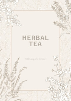 Poster modello decorato con fiori di prato selvatici in fiore ed erbe fiorite disegnati a mano con linee di contorno su sfondo chiaro.