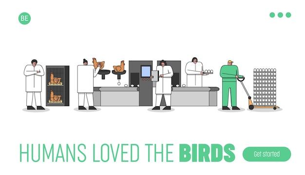 Progettazione della pagina di destinazione dell'allevamento avicolo con i lavoratori che controllano il processo di riproduzione